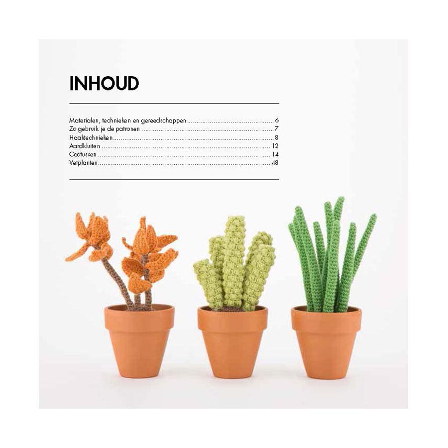 Hedendaags Cactussen haken - Wolnut DU-18