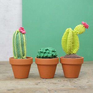 Cactussen Haakpakket